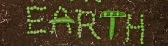 cropped-peas-on-earth.jpg
